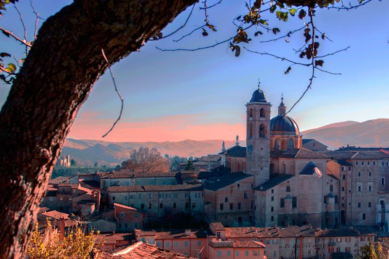Urbino2
